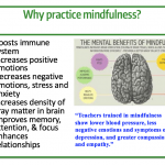 Examining the Evidence for School-Based Mindfulness