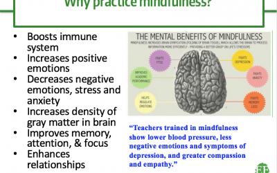School-Based Mindfulness – Examining the Evidence