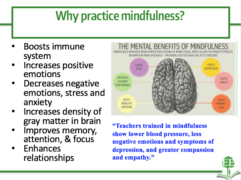 School-Based Mindfulness – Examining the Evidence