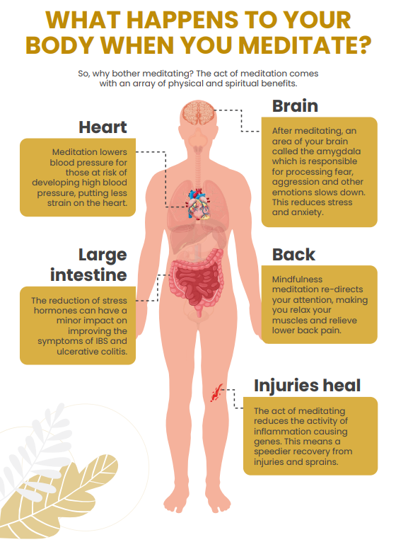 body benefits of mindfulness for kids