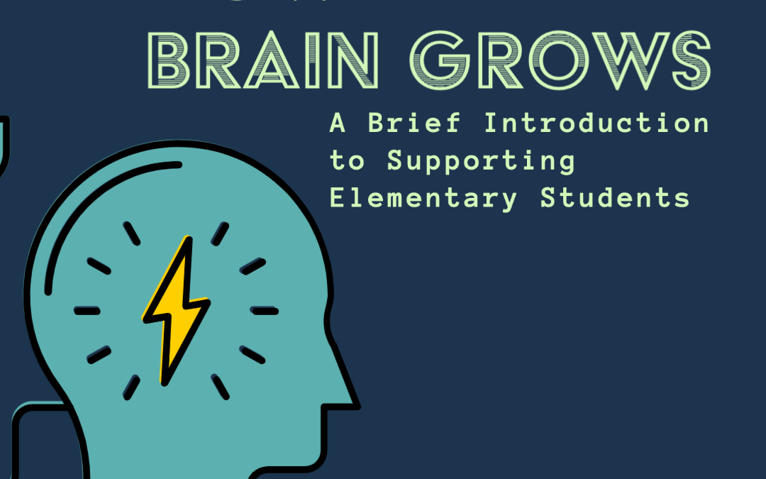 How the Brain Grows, Neuroplasticity Elementary Students