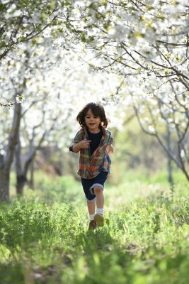 kids sel and mindfulness