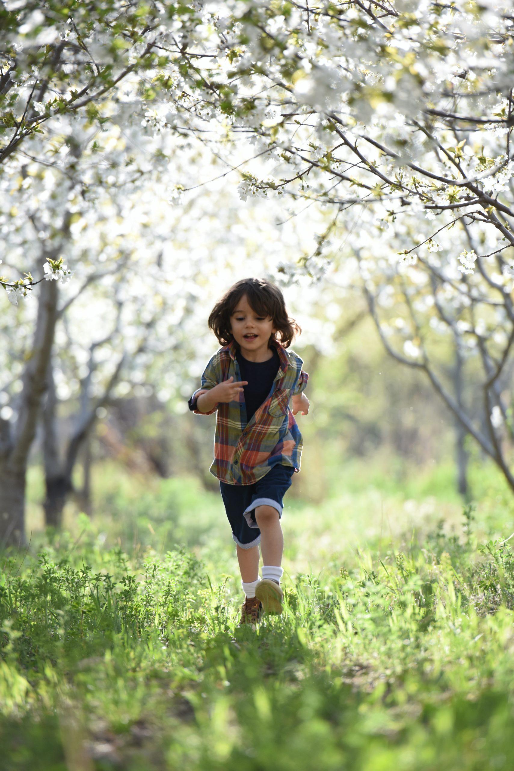 kids sel and mindfulness