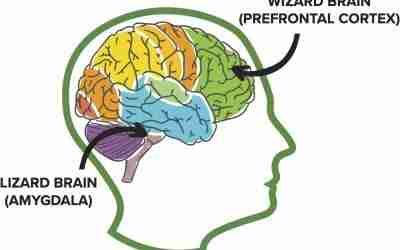 Benefits of Mindfulness for Children