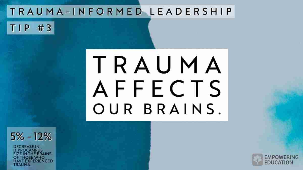 Trauma Affects our Brains